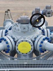 multiport selector valve