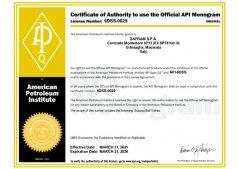 API 6DSS-0029